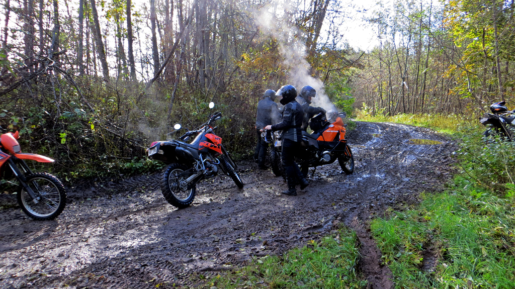 Ele_First_moto-orientating_2012_gettingpointsfromwoods